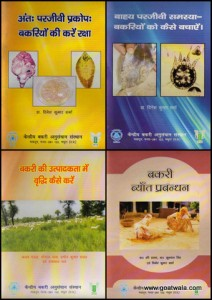Folder's Collage (1)