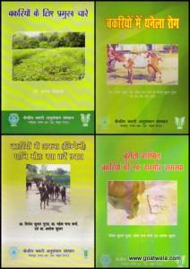 Folder's Collage (9)